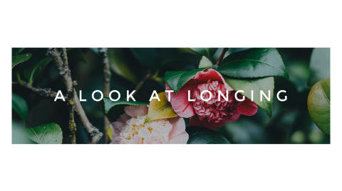 A Look At Longing